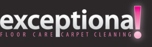 Exceptional Carpet Cleaning
